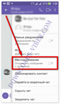 how-to-track-viber-location-screenshot-05-230x400.png