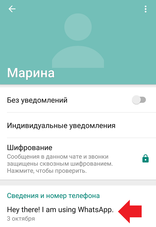 hey-there-i-am-using-whatsapp-chto-znachit1.png