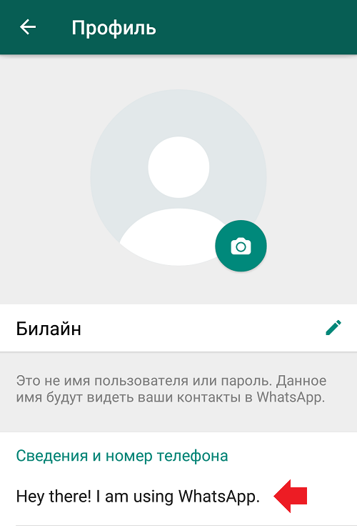 hey-there-i-am-using-whatsapp-chto-znachit3.png
